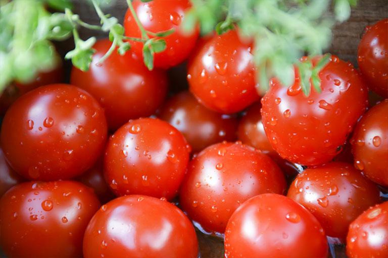 Letca produse legume bio