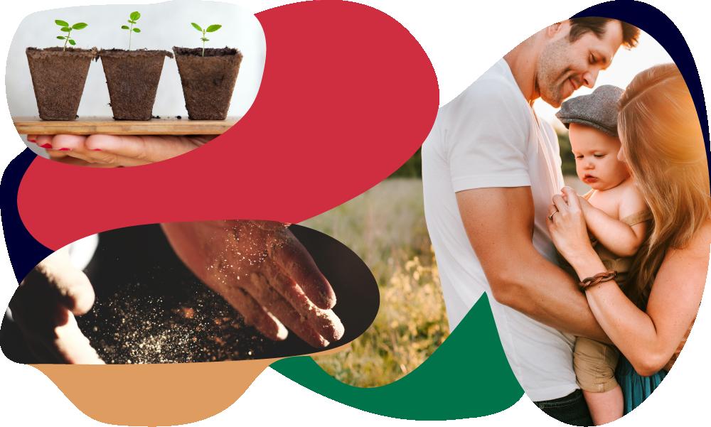 Misiune Letca legume romanesti naturale bio